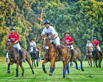 Maryland Polo Club Note Cards